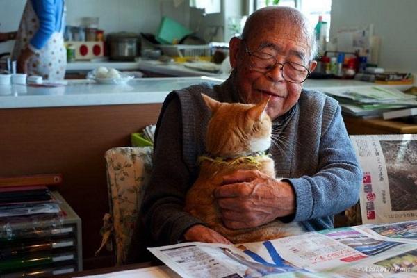 """""""Kinako"""" เจ้าเหมียวส้มผู้เปลี่ยน """"คุณปู่อัลไซเมอร์"""" ให้กลับมามีชีวิตแฮปปี้ และสดใสอีกครั้ง"""
